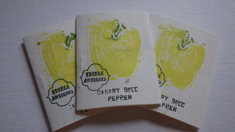 """Canary Bell"" Pepper Seeds"