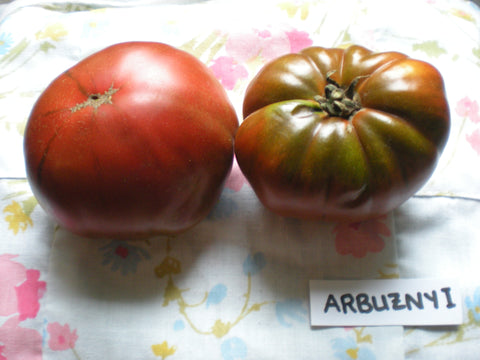 """Arbuznyi"" Tomato Seeds - Edible Antiques"