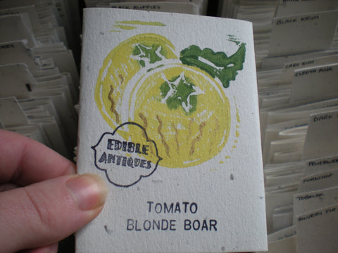 """Blonde Boar"" Tomato Seeds - Edible Antiques"