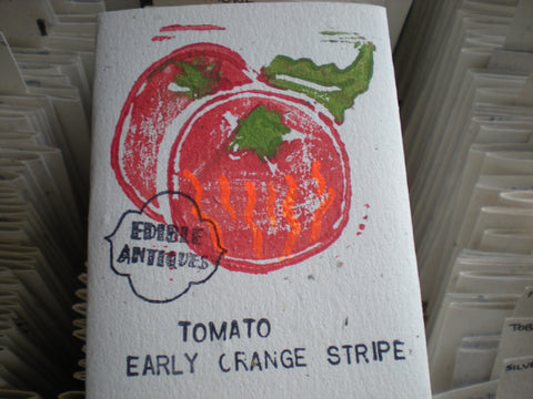 """Early Orange Stripe"" Tomato Seeds - Edible Antiques"