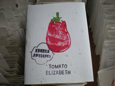 """Elizabeth"" Tomato Seeds - Edible Antiques"