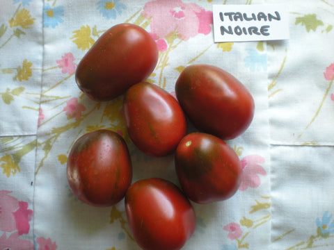 """Italian Noire"" Tomato Seeds - Edible Antiques"