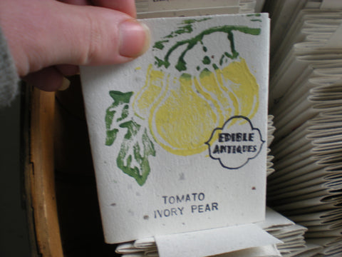 """Ivory Pear"" Tomato Seeds - Edible Antiques"