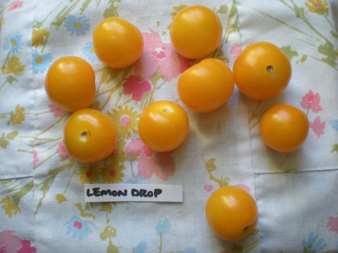 """Lemon Drop"" Tomato Seeds - Edible Antiques"