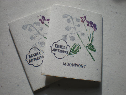 """Moonwort"" Lunaria Seeds - Edible Antiques"