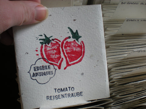 """Reisentraube"" Tomato Seeds - Edible Antiques"