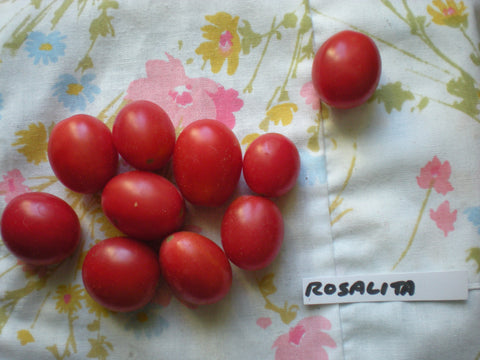 """Rosalita"" Tomato Seeds - Edible Antiques"