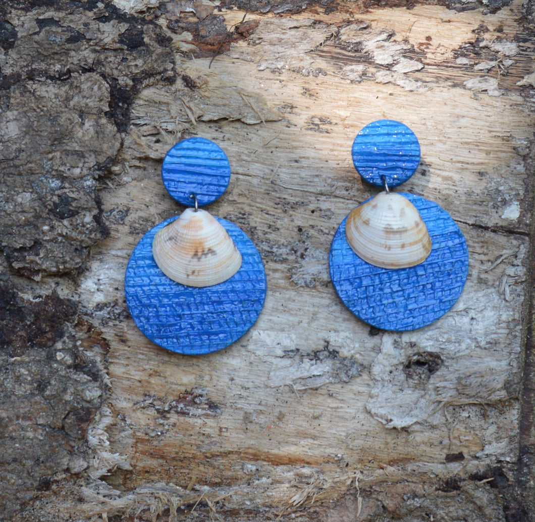 Sea shell, earrings