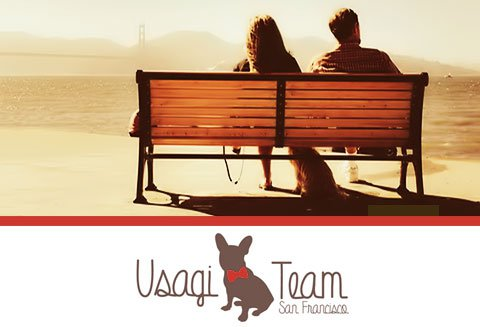 Usagi Team, Handcrafted Pet Dog Collars & Leashes, San Francisco California USA