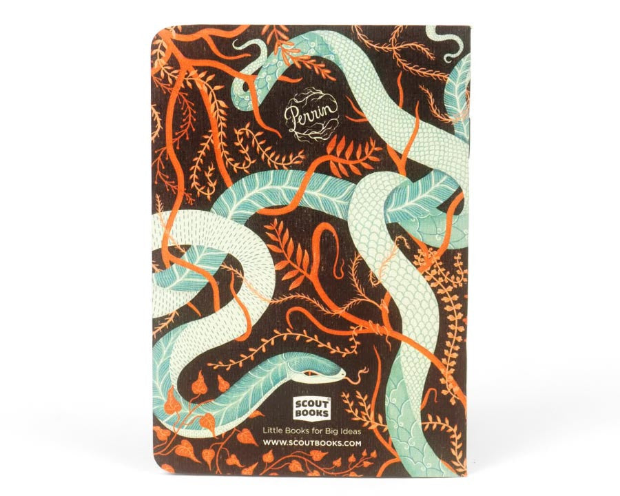 "Scout Books | ""Snakes"" Pocket Notebooks 