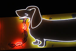 Dog House Neon Sign in Albuquerque, NM