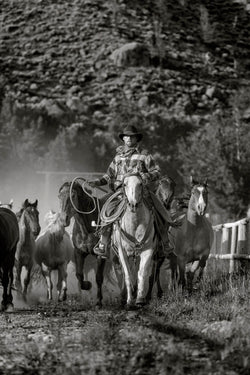 Bringing in the horses I Tom Kirkendall