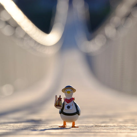 Explorer Duck-Dake Duck Series