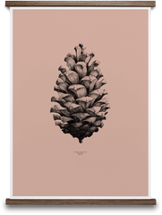 The World Largest Pine Cone art print - pink