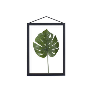 A5 Black aluminium transparent frame with plant