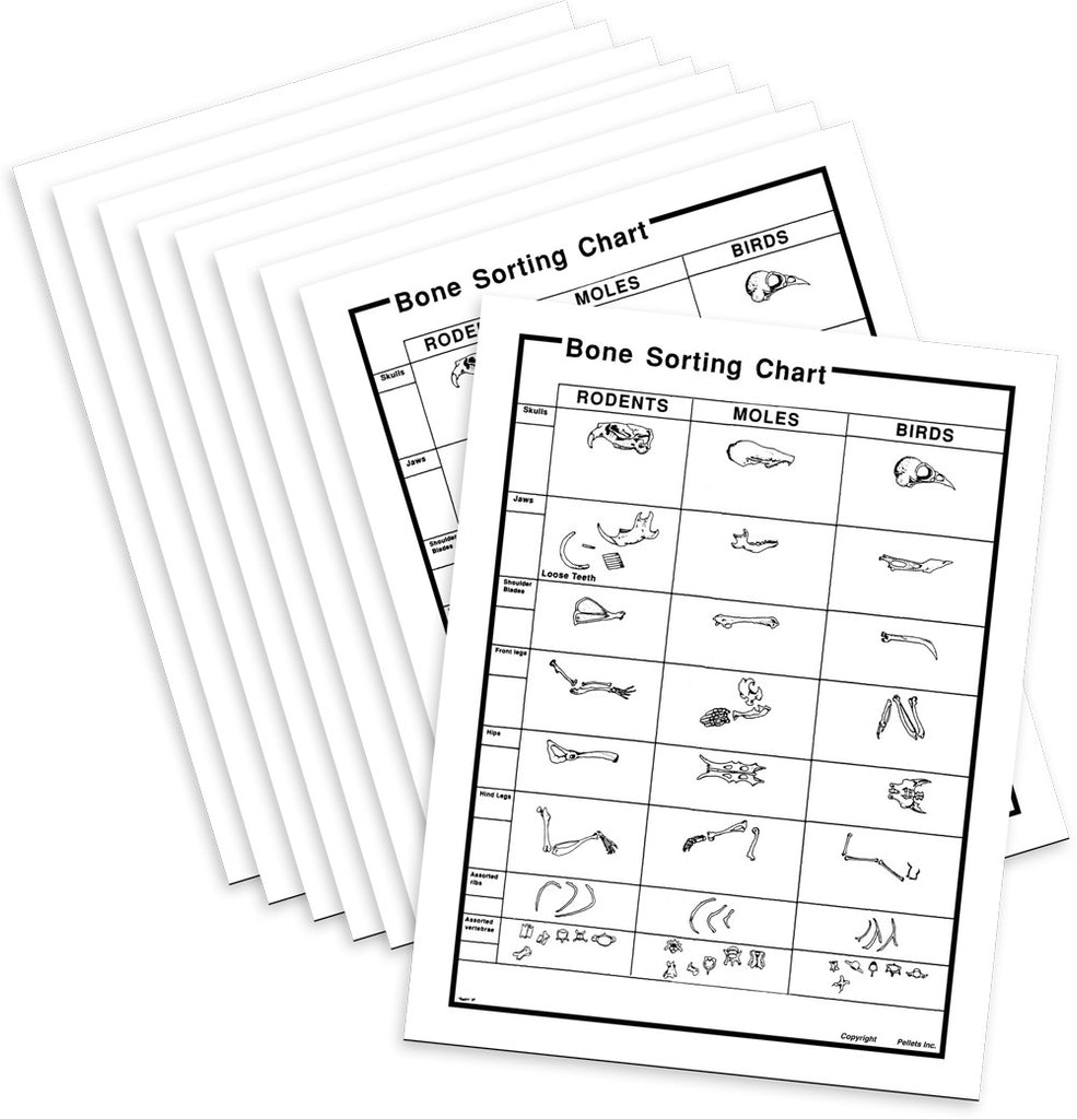Perfect Pellet(TM) Bone Sorting Charts - Paper