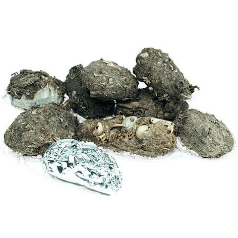 'California' Barn Owl Pellets
