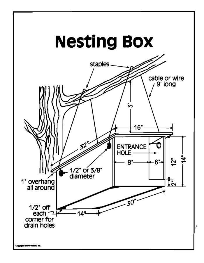 Nest Box Transparency