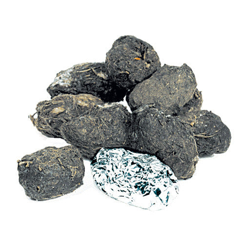 Small Barn Owl Pellets