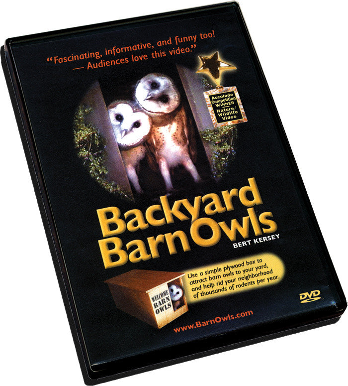 Backyard Barn Owls DVD