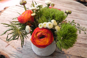 Ranunculus and Moss grass
