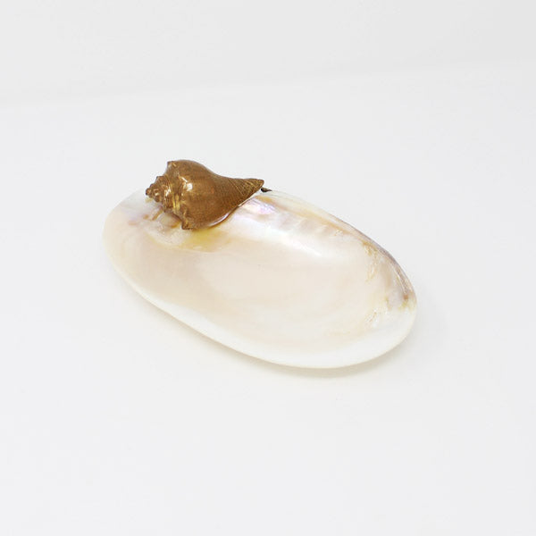 Sea Shell Pearly Platter