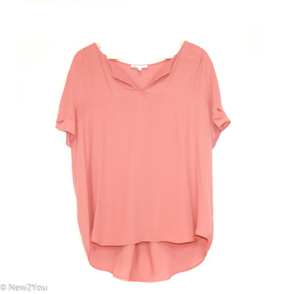 Dusty Rose Sheer Blouse (DR2)