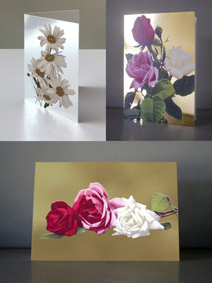 FLORAL BOX SET OF GREETING CARDS