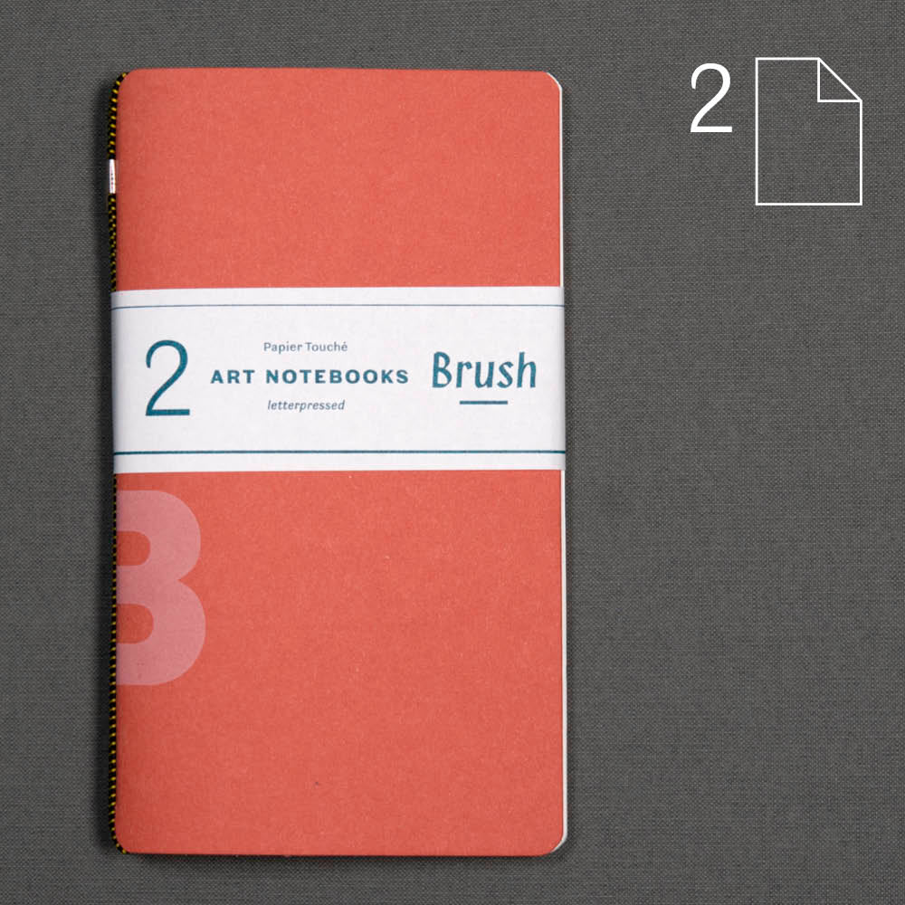Brush: set of 2 notebooks