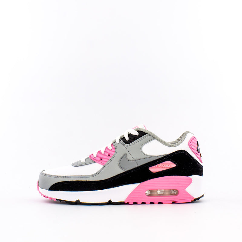 Air Max 90 (Big Kids)
