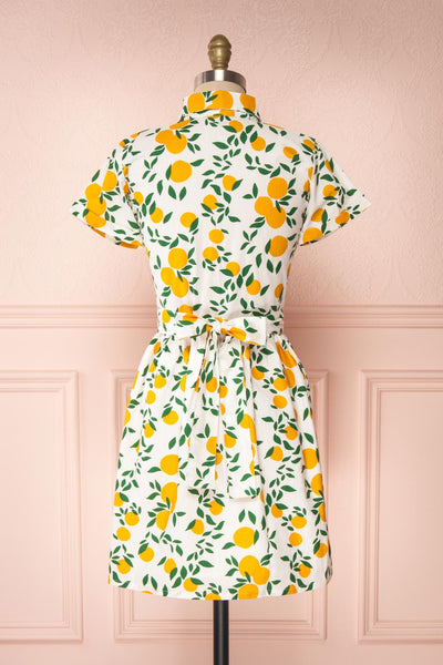 Achillea White Lemon Print Shirt Dress | Boutique 1861 back view