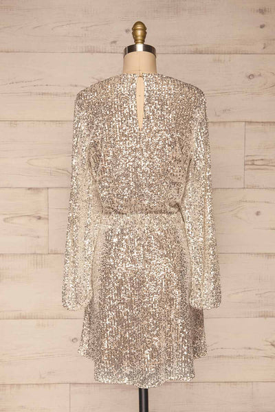 Adelfia Silver Sequin Dress | Robe | La Petite Garçonne back view
