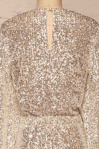 Adelfia Silver Sequin Dress | Robe | La Petite Garçonne back close-up