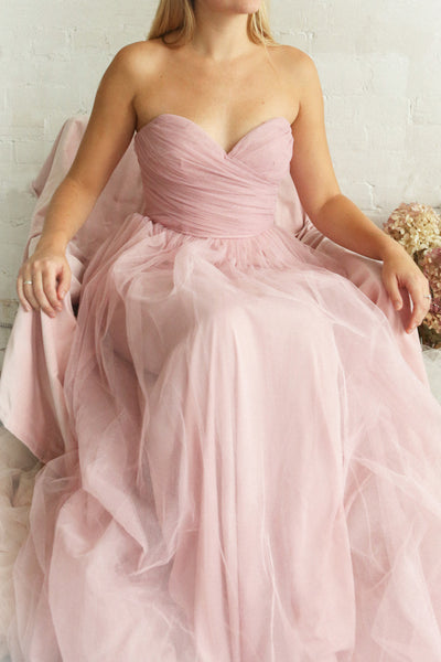 Aerie Dusty Pink Tulle & Mesh A-Line Maxi Dress | Boutique 1861 on model