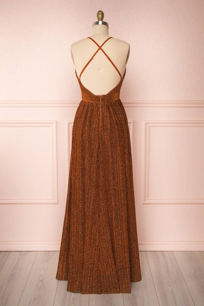 Arnemande Rust Pleated Gown w/ Glitters back view | Boutique 1861