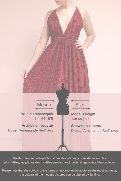 Arnemande Red Pleated Gown w/ Glitters | Boutique 1861 template