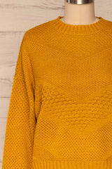 Banife Curcuma Yellow Knit Sweater front close-up | La Petite Garçonne