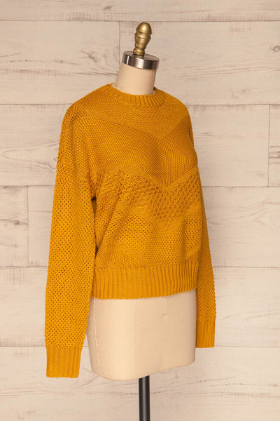 Banife Curcuma Yellow Knit Sweater side view | La Petite Garçonne