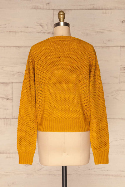 Banife Curcuma Yellow Knit Sweater back view | La Petite Garçonne