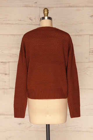 Banife Curry Brown Knit Sweater back view | La Petite Garçonne