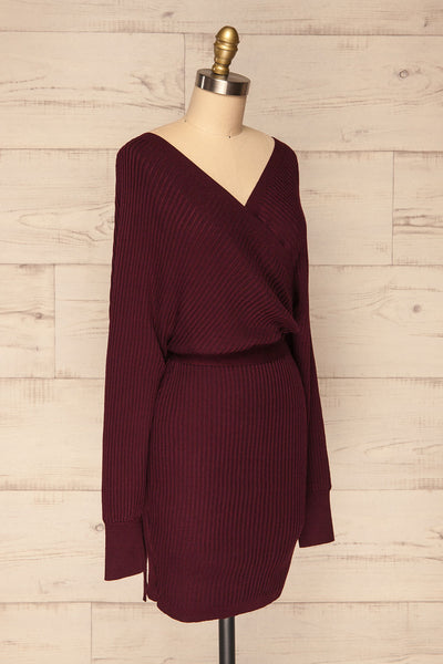 Bergame Purple Red Wrap Sweater Dress | La Petite Garçonne side view