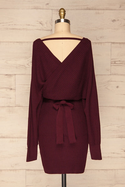 Bergame Purple Red Wrap Sweater Dress | La Petite Garçonne back view
