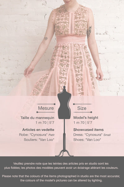 Cynosura Pink & Taupe Mesh Embroidered Maxi Dress | Boutique 1861 template