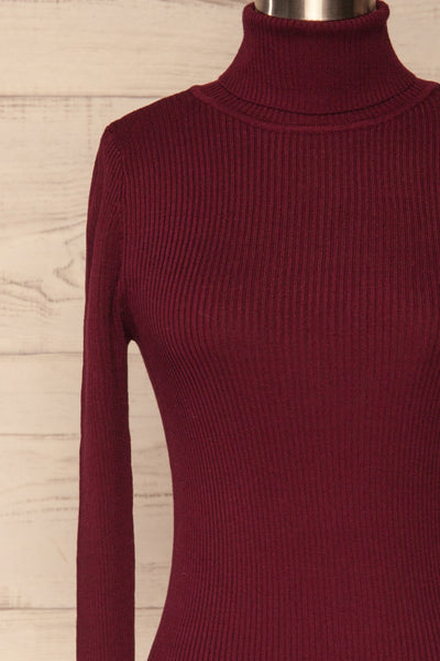 Dagsvik Burgundy Ribbed Turtleneck Top front close up | La Petite Garçonne