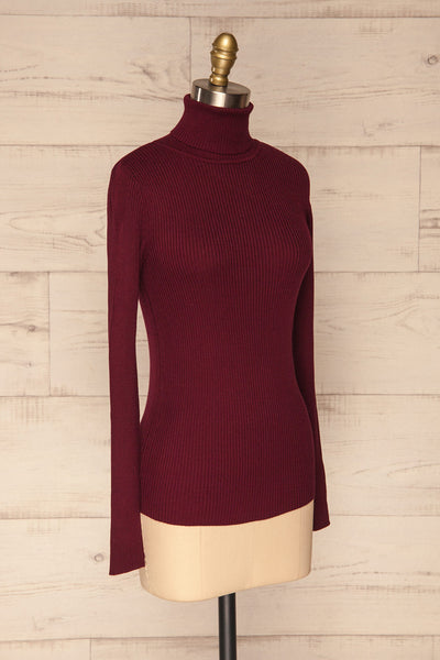 Dagsvik Burgundy Ribbed Turtleneck Top side view | La Petite Garçonne