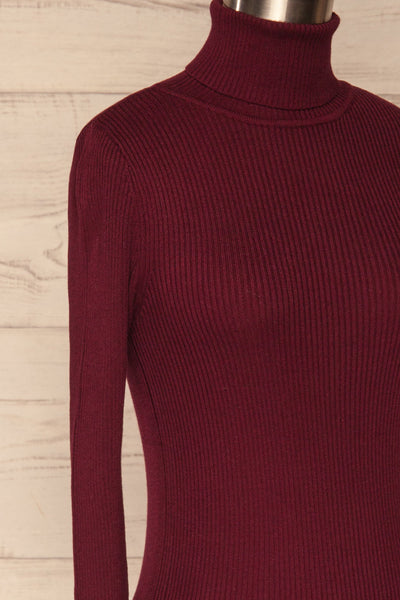 Dagsvik Burgundy Ribbed Turtleneck Top side close up | La Petite Garçonne