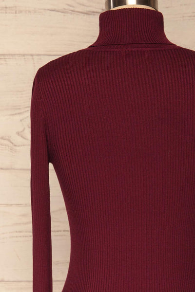 Dagsvik Burgundy Ribbed Turtleneck Top back close up | La Petite Garçonne