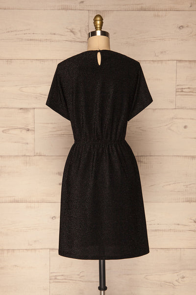 Dobele Black Sparkling Short Sleeve Dress | La petite garçonne back view