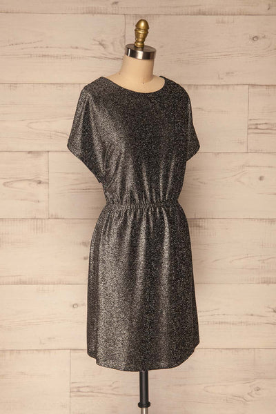 Dobele Silver Sparkling Short Sleeve Dress | La petite garçonne side view
