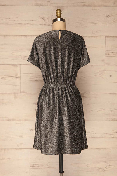 Dobele Silver Sparkling Short Sleeve Dress | La petite garçonne back view